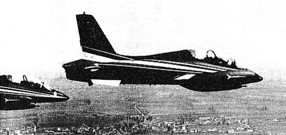 Due Aermacchi MB-339 delle Frecce Tricolori In volo sul Friuli